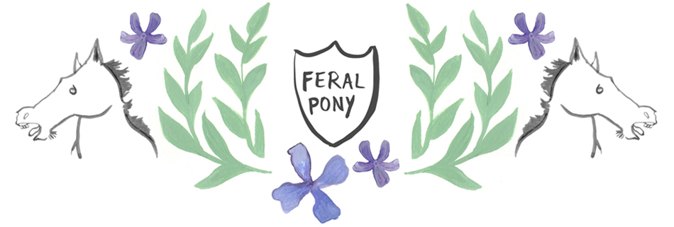 Feral Pony Illustration