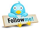 Follow Daisy Deadhead on Twitter