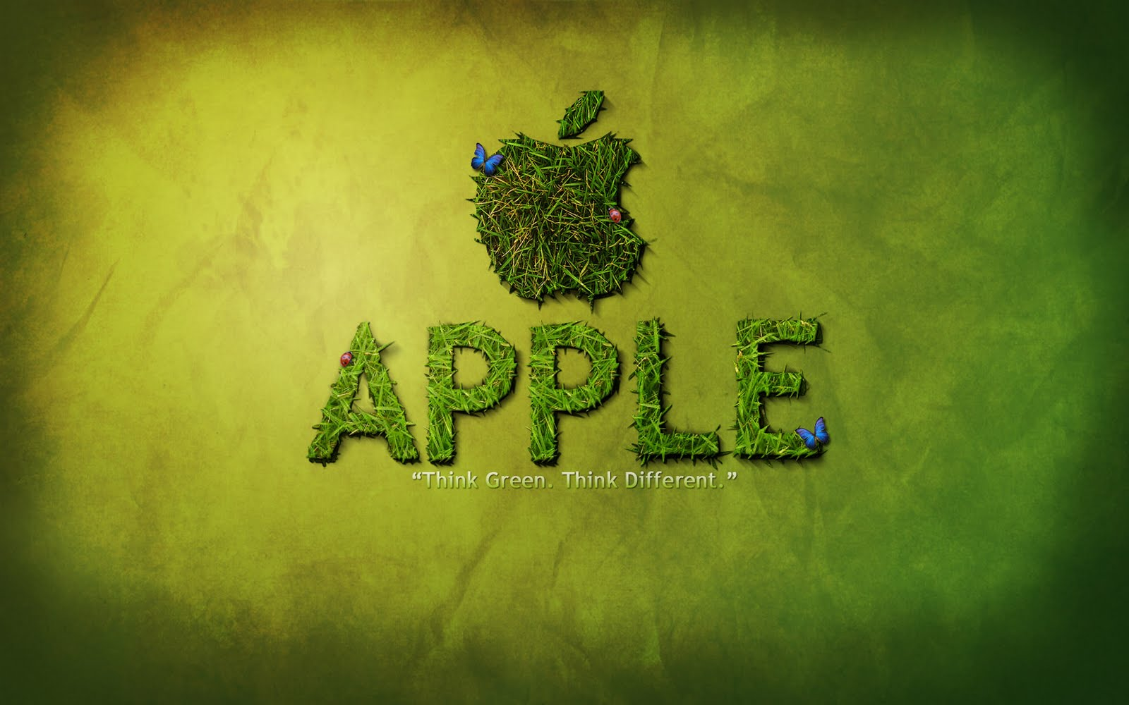 http://1.bp.blogspot.com/-37CLYdJRa2I/Tf8i09E5YLI/AAAAAAAAIwc/E0p4p1pSm0o/s1600/New+Apple+Wallpaper+HD.jpg