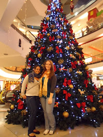 Christmas tree in Oviedo