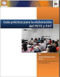 GUÍA PRÁCTICA PARA LA ELABORACIÓN DEL PETE Y PAT