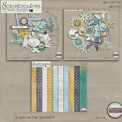 http://scrapbookbytes.com/store/digital-scrapbooking-supplies/Capture-the-moment_bundle.html