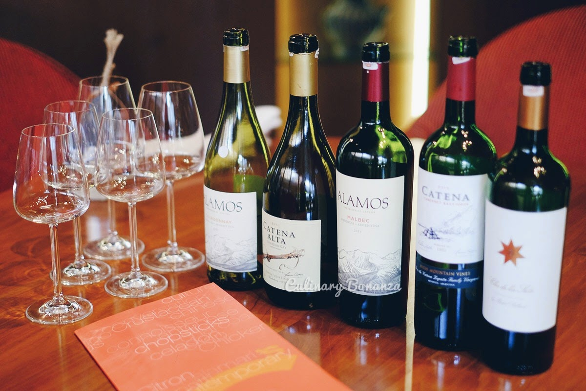 Argentina Wines (www.culinarybonanza.com)