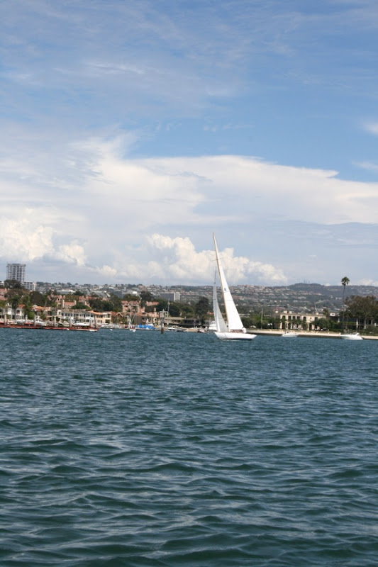 Newport beach Harbor California
