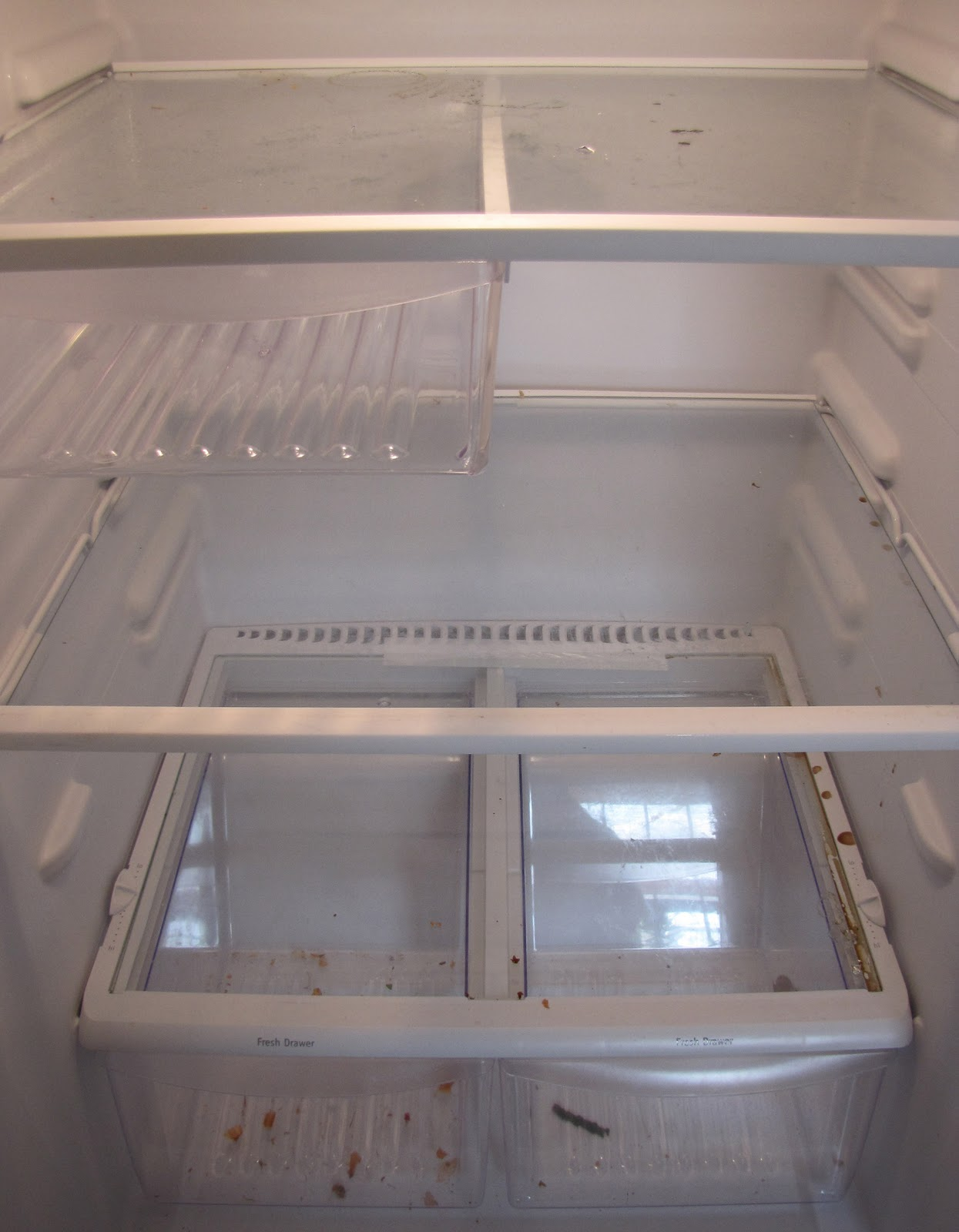 how to clean the inside of a fridge