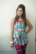 Neha deshpande Photos at Dil Diwana press meet-thumbnail-12