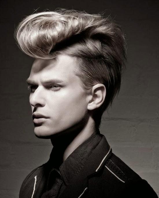 Kapsels Mannen Steil Haar