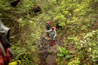 Keeha Bay Trail, no shortage of mud!