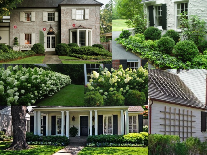 A green and white palette consisting of boxwood, pachysandra and hydrangeas  (limelight). I'd also like some climbing vines on the side of our garage. - Green Street: Our Home: Landscaping