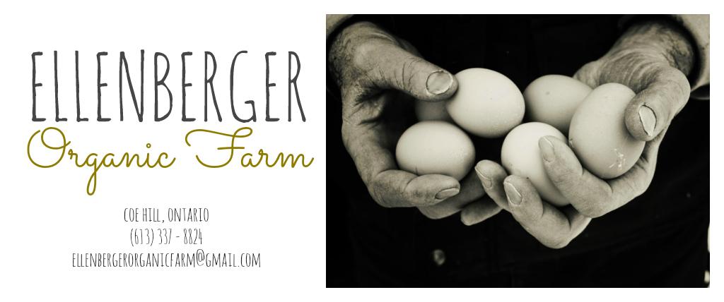 Ellenberger Organic Farm
