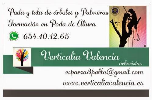 Verticalia Valencia