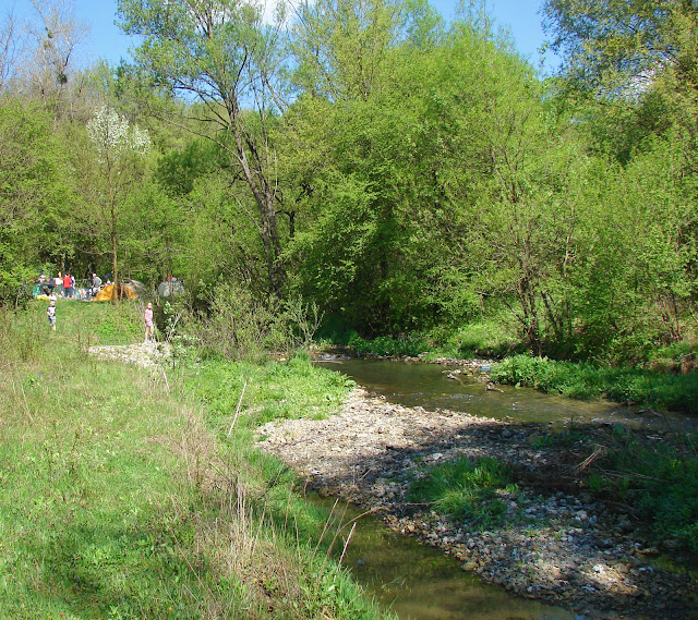 Река Гниловодка рядом с нашим лагерем
