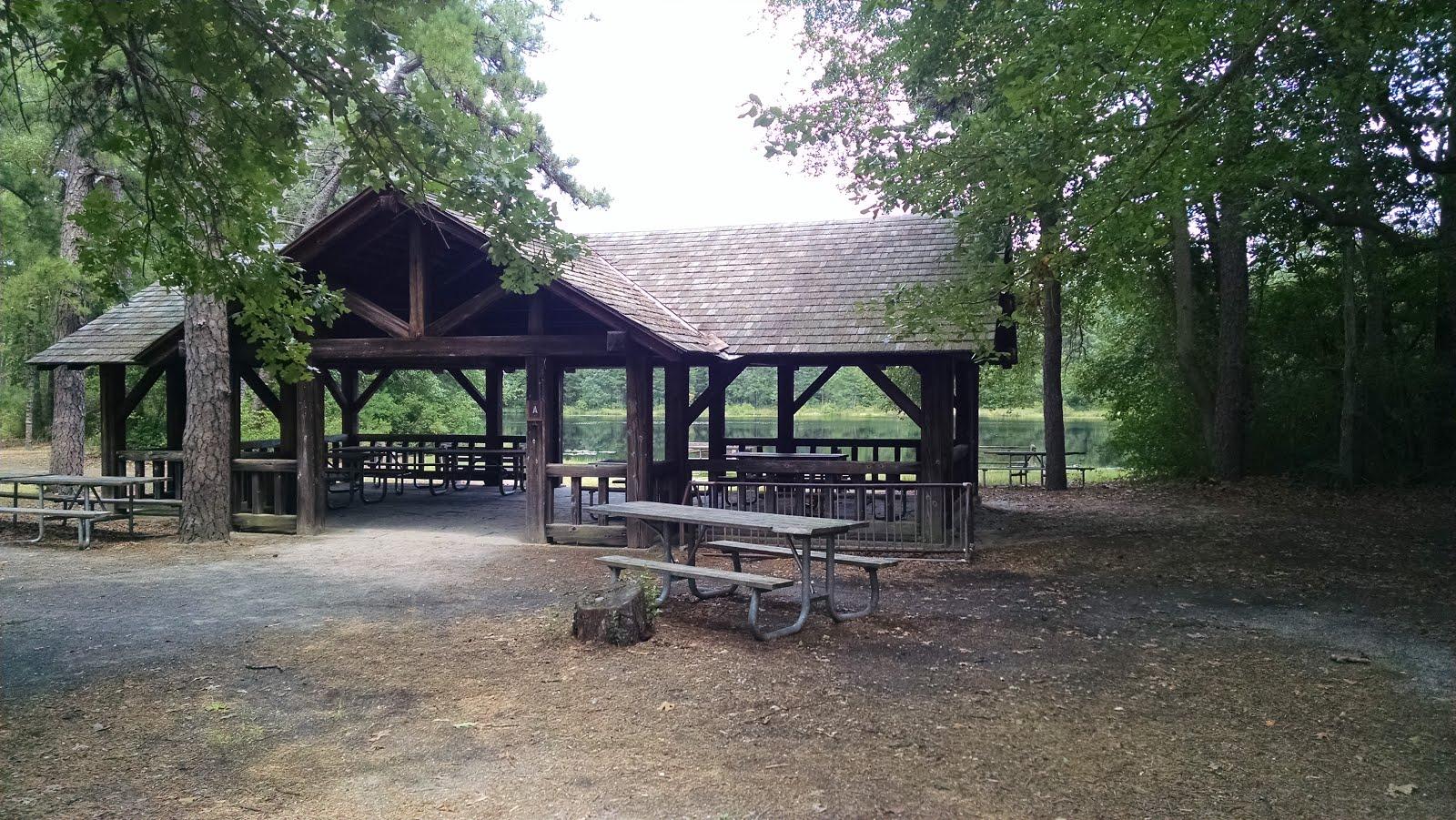Pakim Pond, Brendan Byrne State Forest