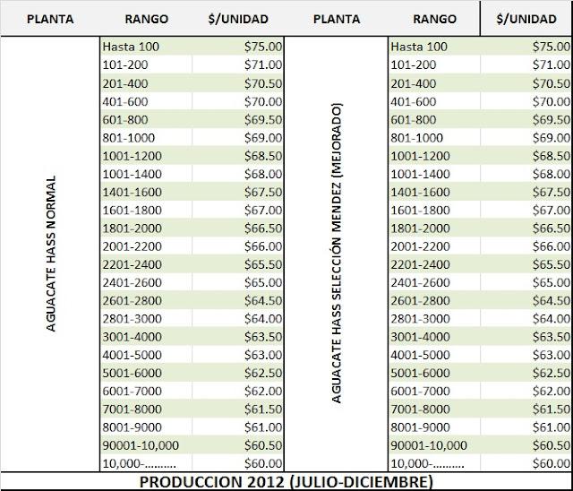 Precios 2012 el informativo del aguacatero for Plantas precios viveros