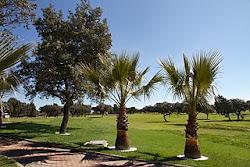 Practica el Golf en Los Pedroches