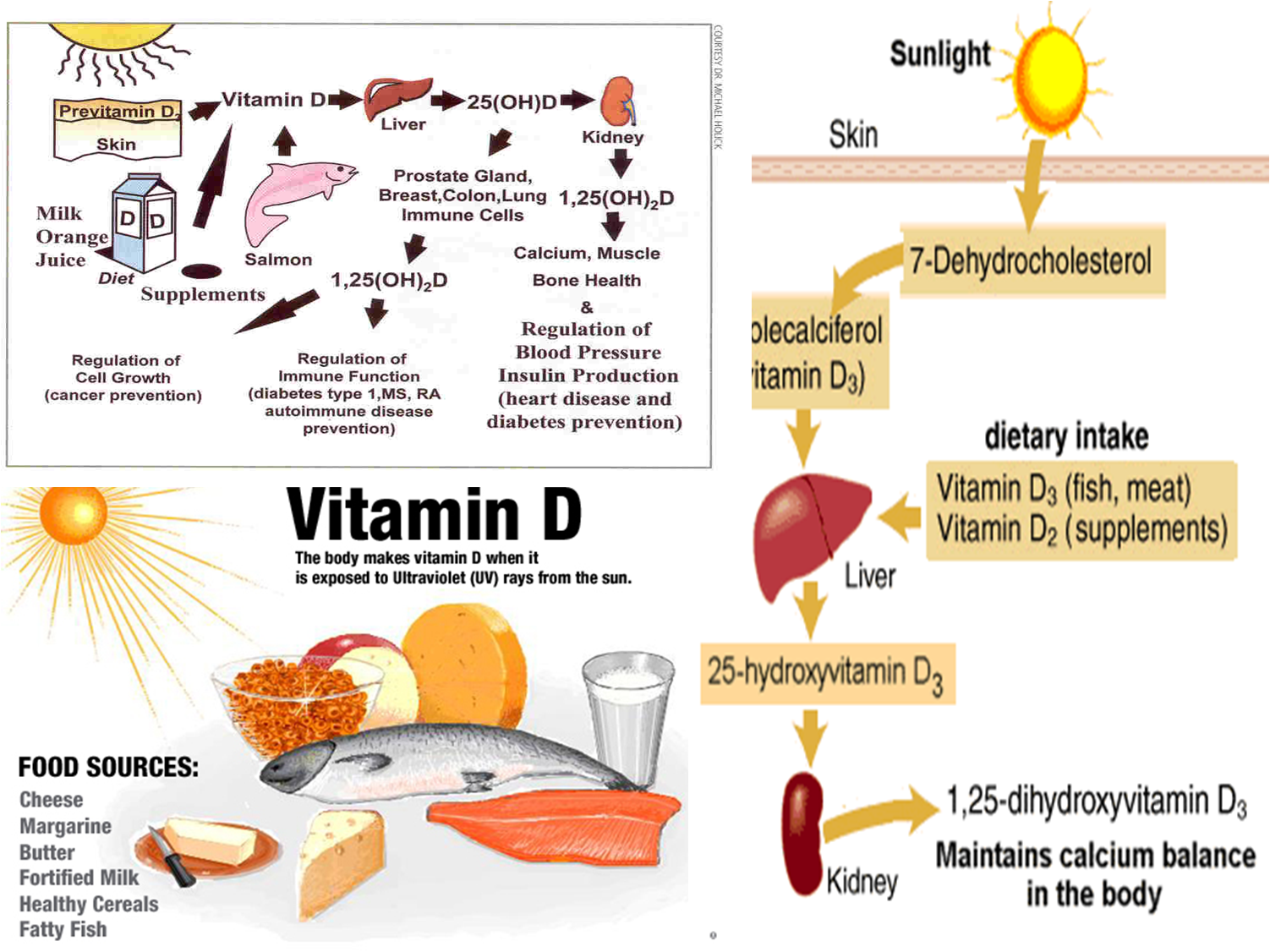 Vitamin D: What's the Latest?