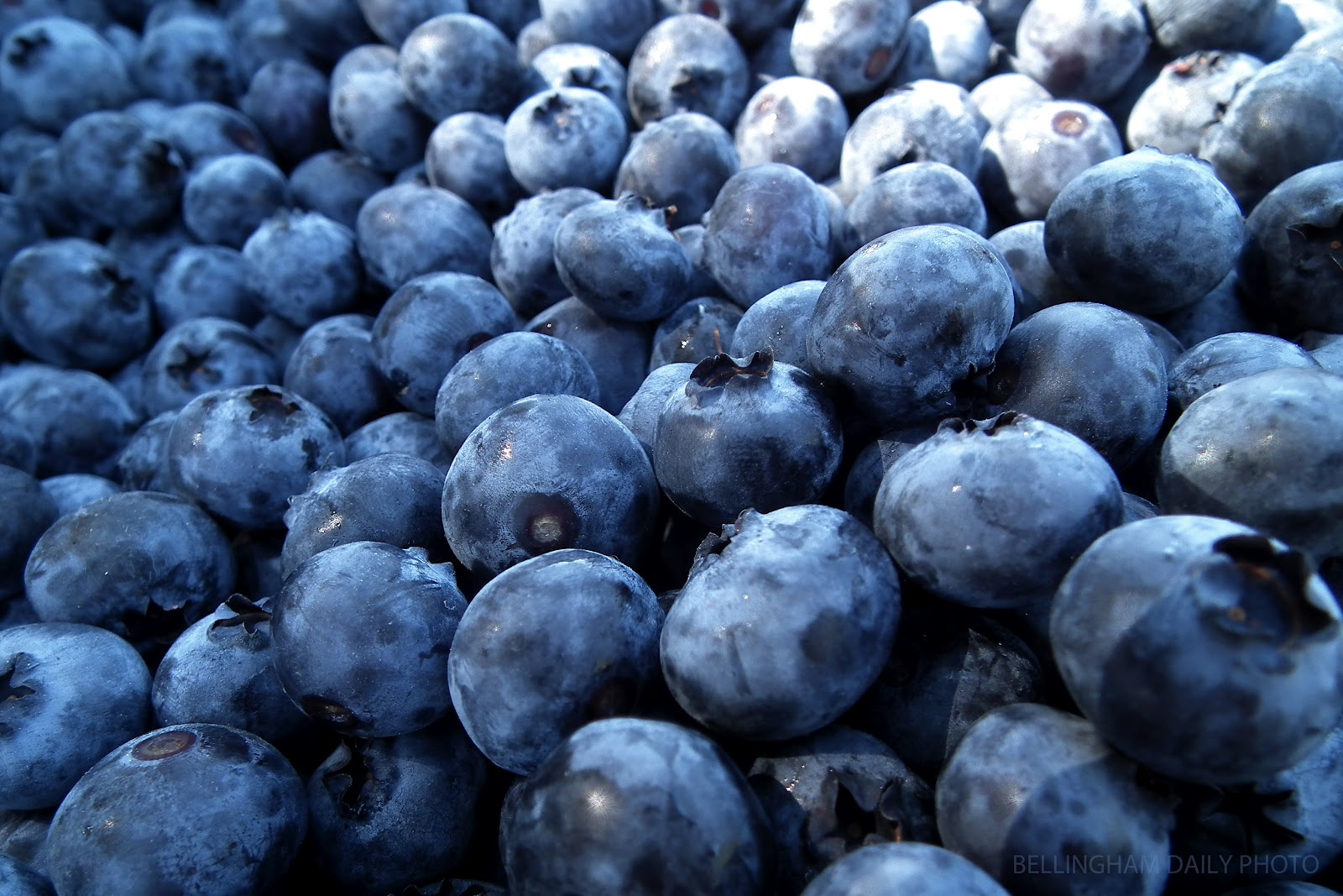 Quantity 520 grams energy 224 calories carbs 50 grams blueberries