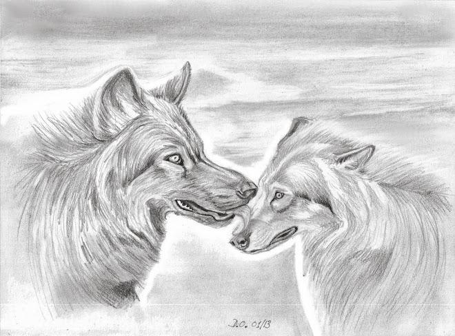 Bises de loup (2013)