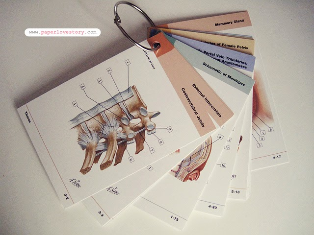 Paper Lovestory { a lifestyle blog from a university student about ...
