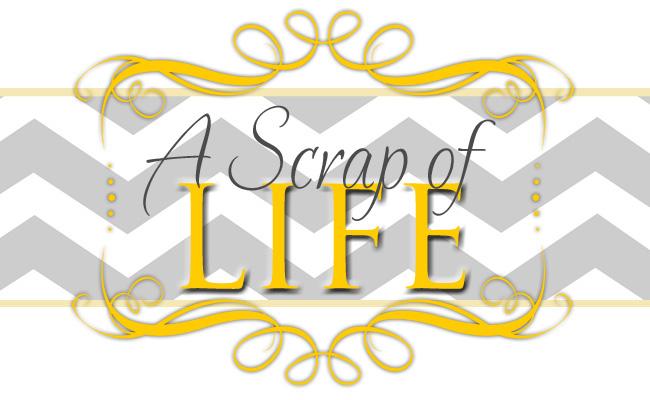 A Scrap of Life