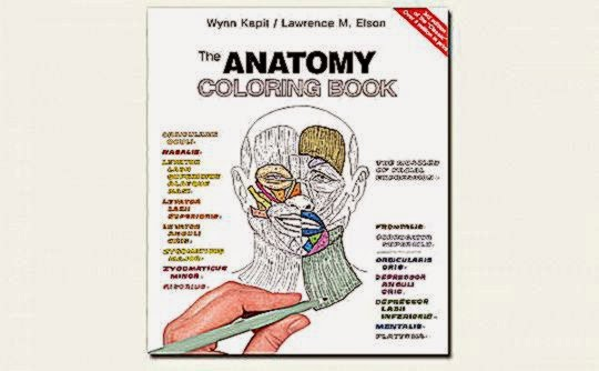 Anatomy Coloring Book 4th Edition Download Free Th Physiology