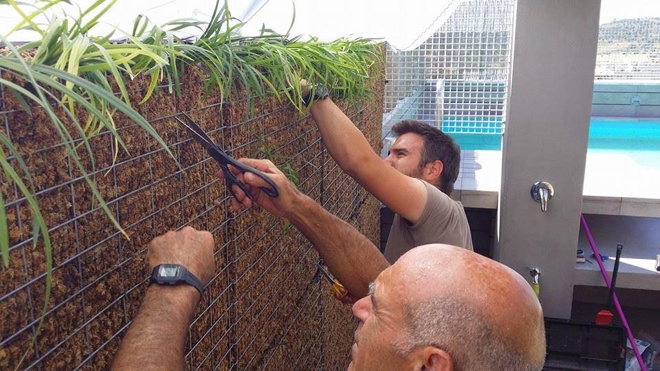 Reformas madrid abril 2015 for Sistema riego jardin vertical