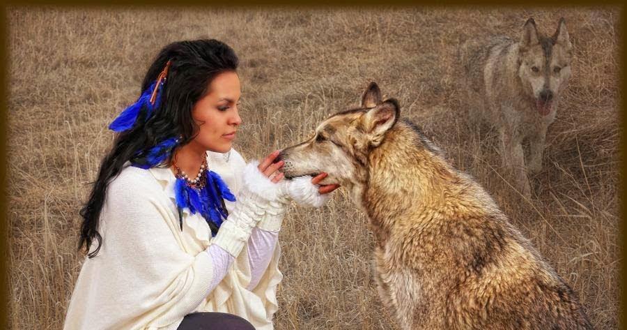 White Wolf : 16 Photos...