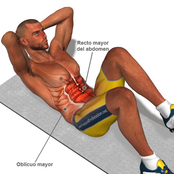 Fortalecer abdominales fisicoculturismo for Abdominales