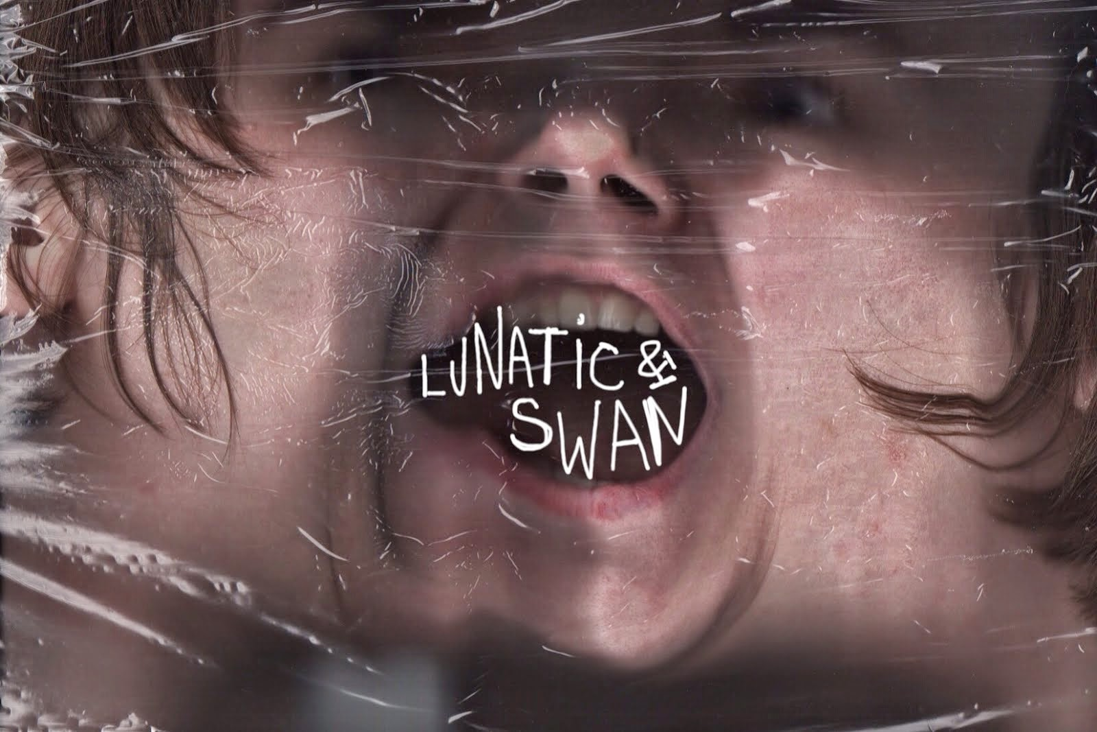 The Lunatic & The Swan