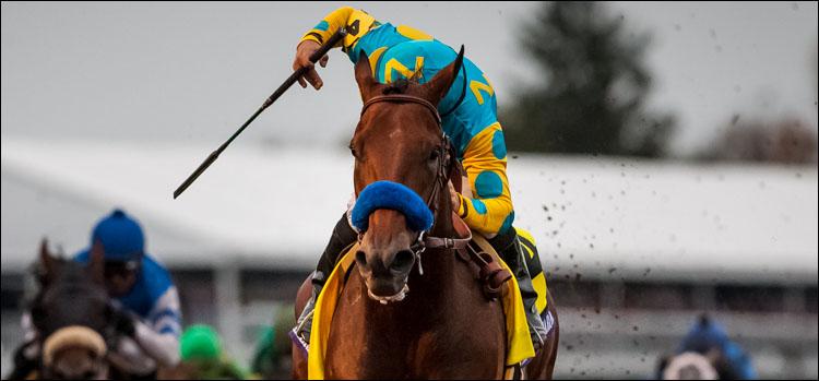 American Pharoah, net esportes, cavalo, corrida de cavalos
