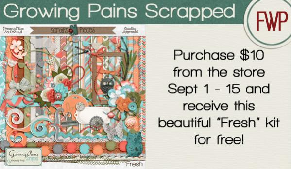 http://www.scraps-n-pieces.com/store/