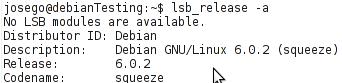 Imagen de la primera forma de obtener la versión de Debian