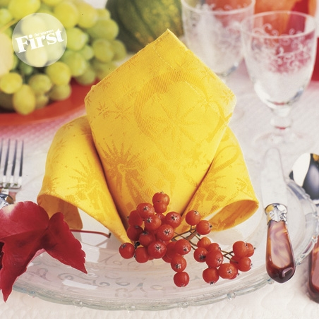 Fabulous Crown Fold Napkin by First for Women