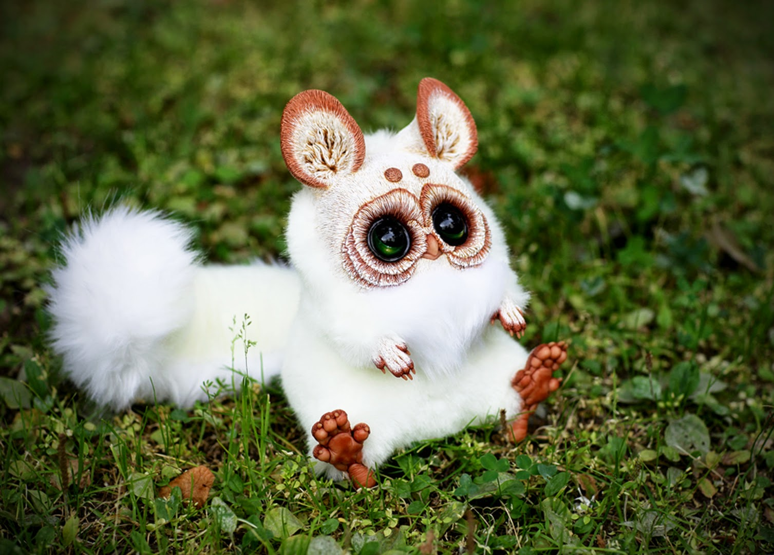 Pics Wallpaper HD Cute Inari Fox Animals Wallpaper HD