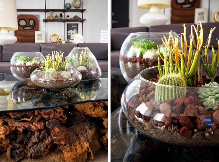 diy-centros-de-mesa-cactus-suculentas
