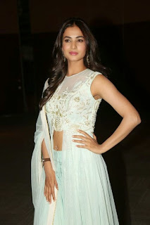 Sonal Chauhan Pictures at Pandaga Chesko Audio Release ~ Celebs Next