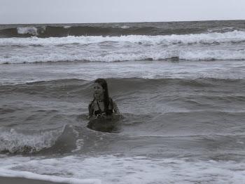 Disimular, beberte el mar, que solo es una miguita,