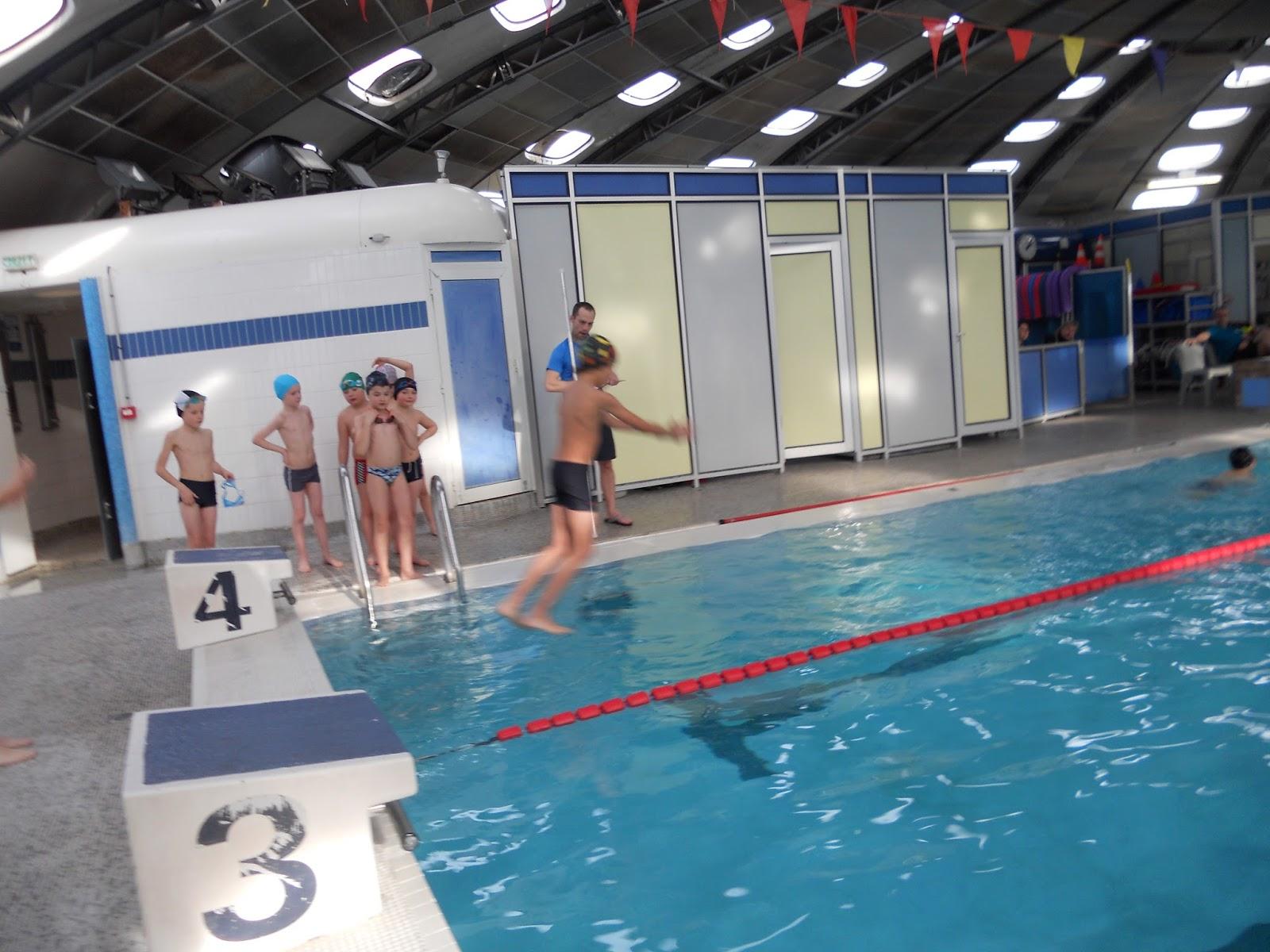 Ecole yann arthus bertrand cysoing piscine ce2 et ulis for Piscine ulis