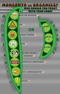 comida orgánica Oliva Premium