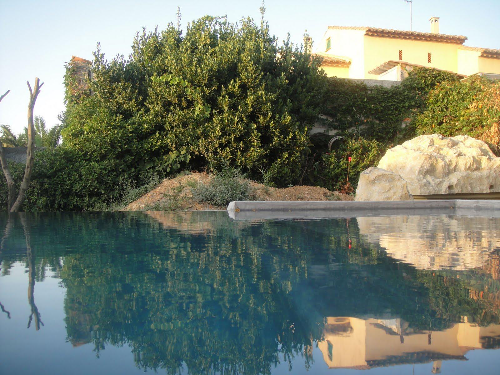 Faux rocher ou local construction piscine diffazur for Local piscine rocher