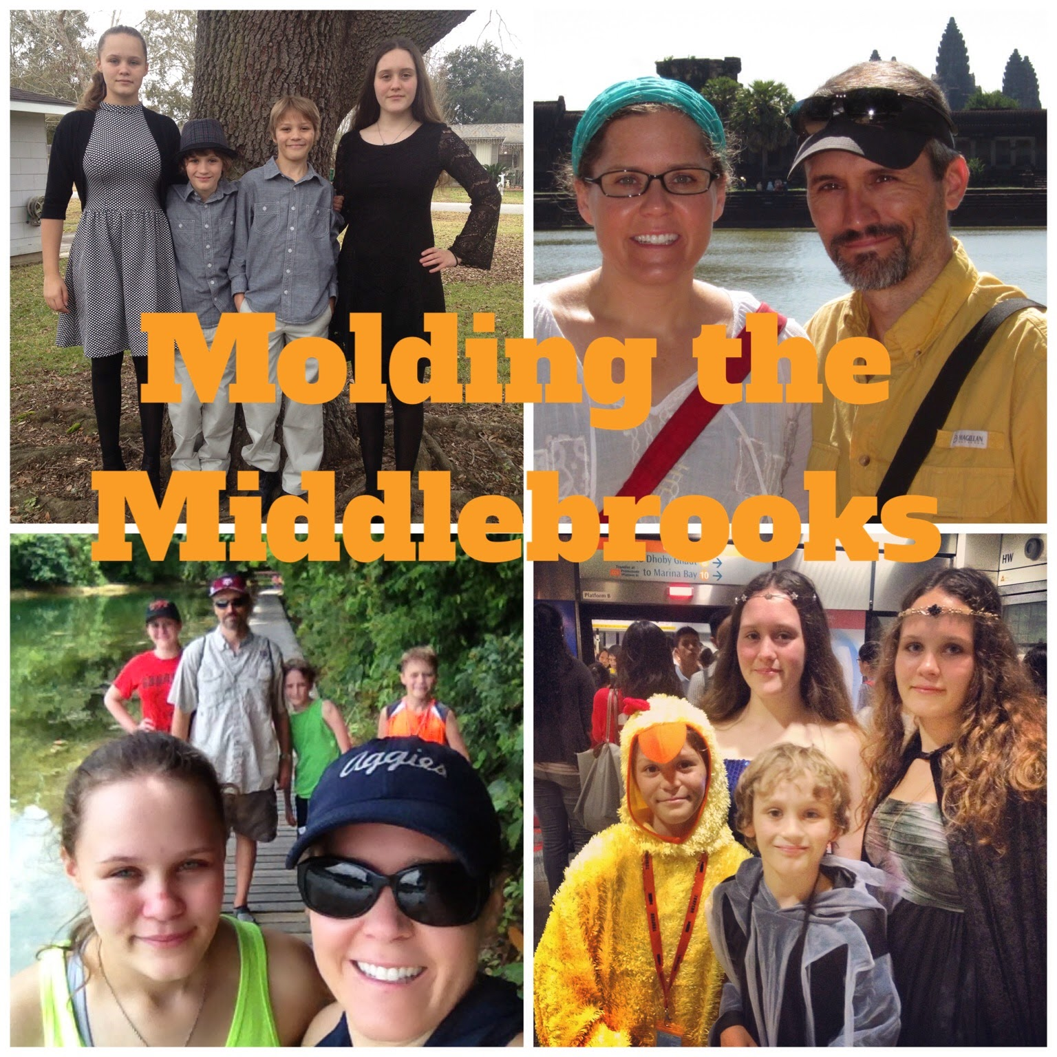 Molding the Middlebrooks