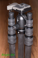 Gitzo GT1544T tripod legs folded around a Manfrotto 494 RC2 head