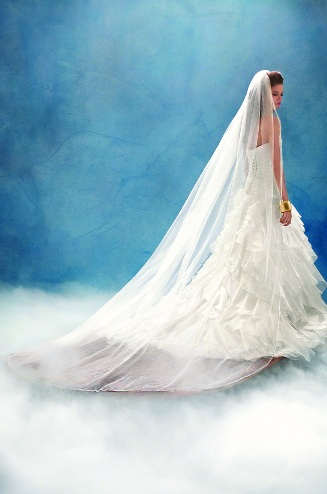 Official Disney Bridal Veils from Alfred Angelo - Jasmine