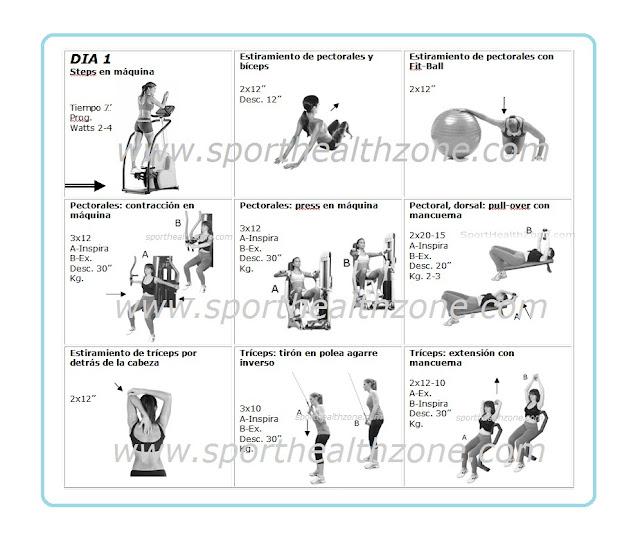 Rutinas de gimnasio pdf images for Rutinas gimnasio