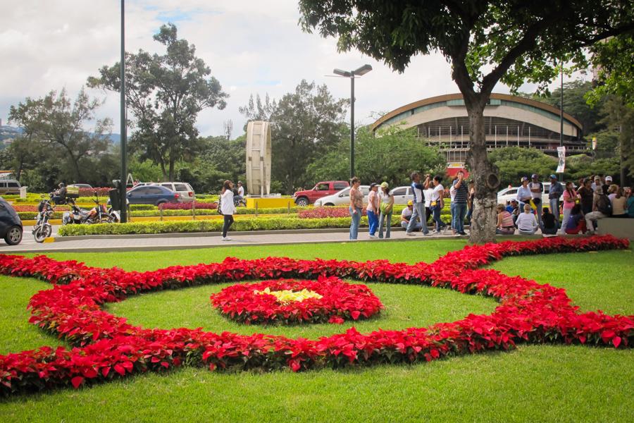 Caracas shots christmas spirit plaza venezuela - Fotos de jardines decorados ...