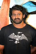 Rebel star Prabhas latest Photos at Basanthi event-thumbnail-11