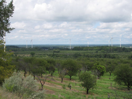 Mason County wind turbines