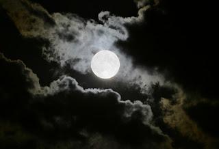 Dieta de la luna fases lunares mes de noviembre for Proxima luna creciente