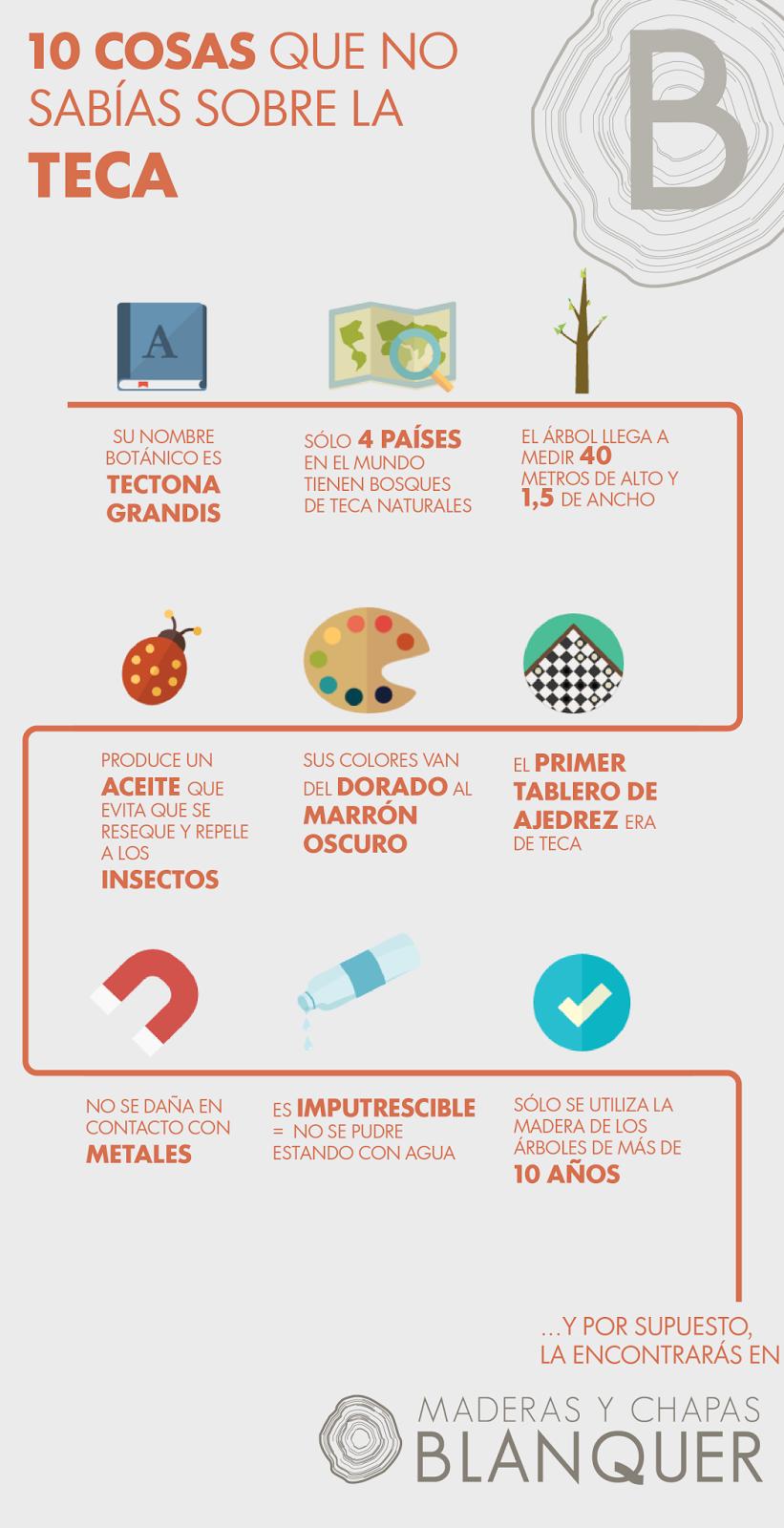 infografía teca