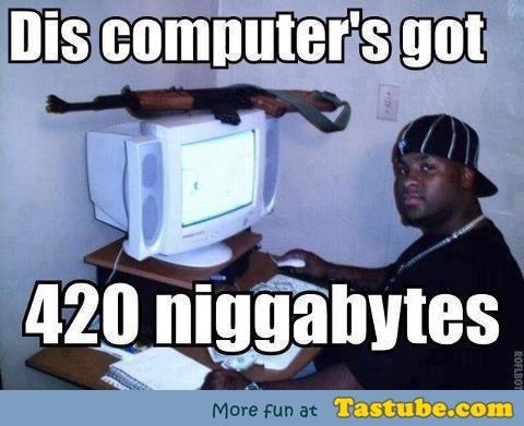 420 Niggabytes